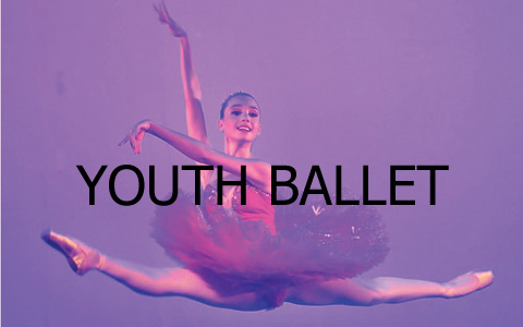 synopsis-ecole-danse-perpignan-youth-ballet-over